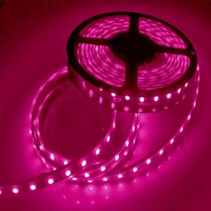 Pink flexible light