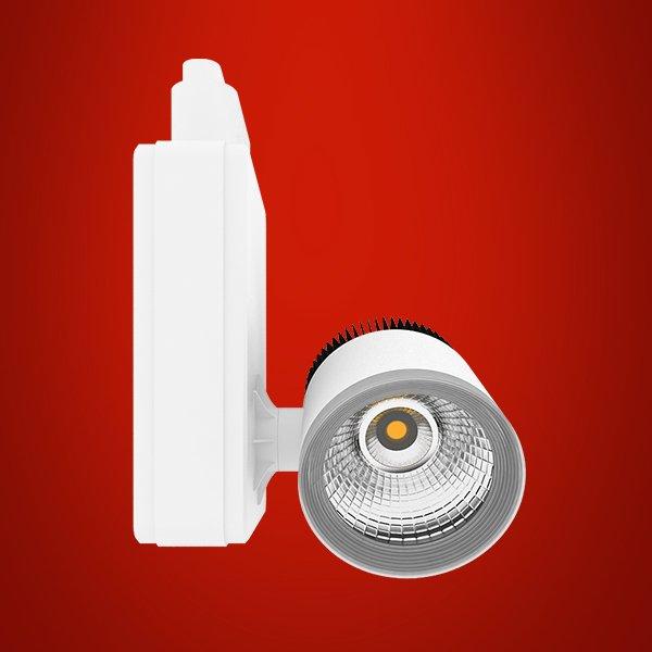 Adjustable cob downlight series 8020 R