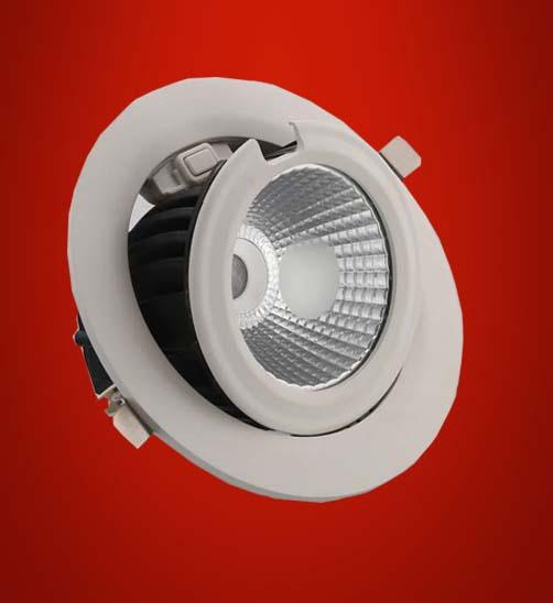 COB ZOOM LIGHT 88030 R (WATTAGE:30 W)